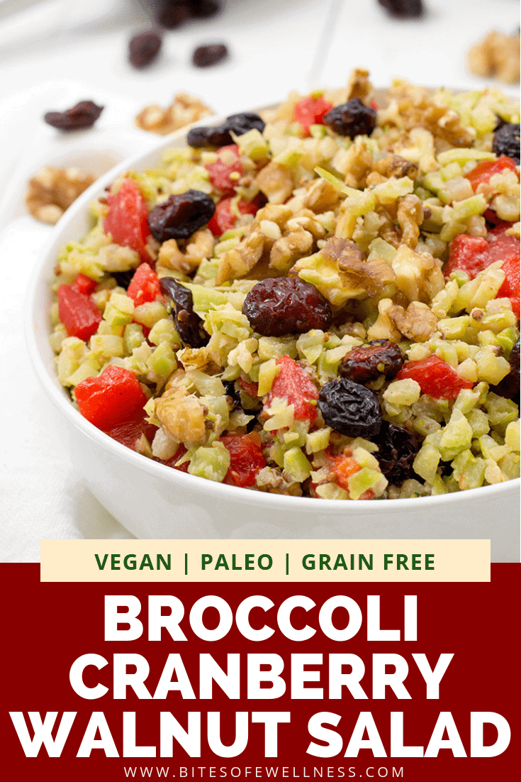 This vegan broccoli cranberry walnut salad is the perfect lunch or dinner recipe! Easy to make, just a few ingredients and so delicious! Paleo, vegan, grain free, gluten free and great for meal prep! #Paleo #grainfree #glutenfree #salad | bitesofwellness.com