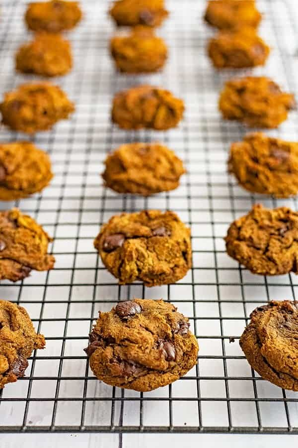 Healthy butternut squash chocolate chip protein cookies lined up on a black wire baking rack.