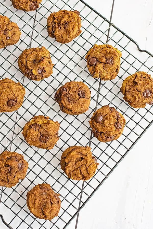 Black wire cooling rack filled with butternut squash chocolate chip protein cookies