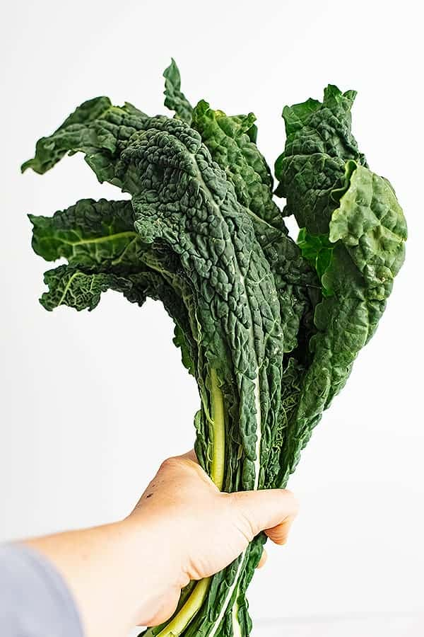 Hand holding a bunch of lacitno kale