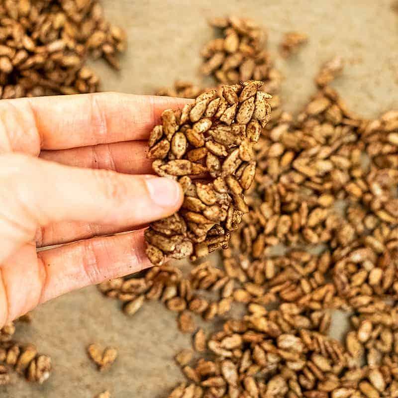 Cluster of spiced pumpkin seeds.