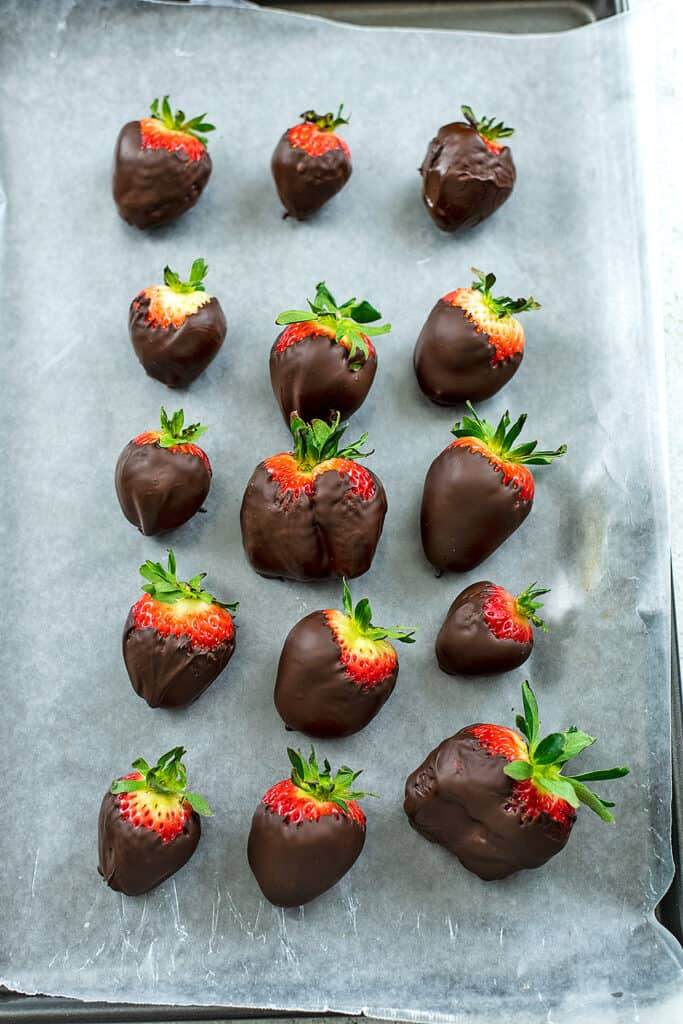 Strawberries on a baking sheet after being dipped in chocolate.